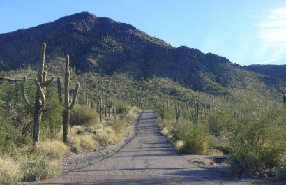 Learn All About Cave Creek Arizona